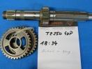 YAMAHA TZ 250 4DP Getriebewelle